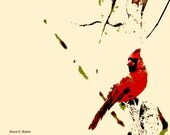 Cardinal Bird Art Abstract Realism Wildlife Red Cream Wildlife Wilderness Home Interior Wall Hanging Texas Artist Giclee Print 8 x 10