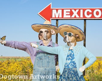This Way to Mexico, large original photograph of boxer dogs wearing sombreros giving directions to a monarch butterfly