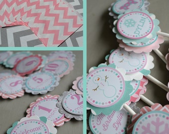Winter Onederland Birthday Party Decorations Pink Aqua Fully Assembled