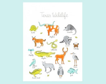 Texas Wildlife Art Print 12x16
