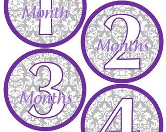 Baby Month Stickers Baby Girl Monthly Stickers Purple and Grey Damask Month Stickers Girl Baby Shower Gift and Photo Prop Darla-T