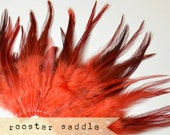 50 pcs+ - RED - Rooster Saddle feathers - 2 inch strip - two-tone, pointy tip, shiny feathers, exotic feathers (RS002)