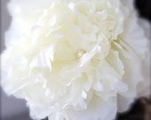 Peony Flower Hair Clip white, ivory with Pearl Center Large Statement Flower Hair Accessory Bridal flower Wedding Hair Flower comb