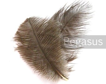 NATURAL BROWN Ostrich Feather Drab (6-8 inches, 3 package option) feather for hat,fascinator,hat,corset,dresses,bouquets, costume,fans