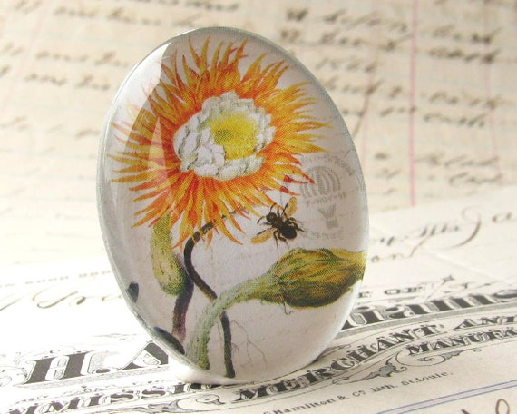 Exclusive, original artwork - sunflower and bee botanical drawing - handmade 40x30mm glass oval cabochon - orange, white, green flower
