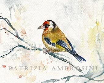 10x8  Original Watercolour  goldfinch.. NOT A PRINT ..Original Painting fine art bird