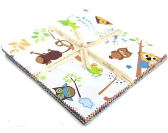 """Hooty Hoot Returns 10"""" Squares Stacker by Doohikey Designs for Riley Blake, 22 pieces"""