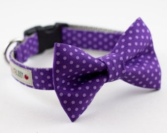 Purple Polka Dot Bowtie Dog Collar