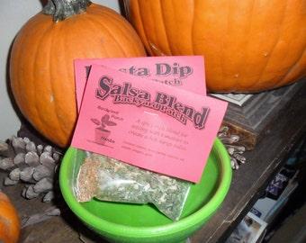 Salsa Gift Bowl with two Herb Mixes, salsa, Fiesta Dip,