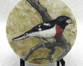 "Rose breasted grosbeak 7"" circle sand painting original art work sand art bird painting common North American birdfeeder birds"
