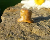 "Fossilized Seashell aka ""Devil's Toenails"" Labret -- 11mm  7/16"""
