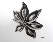 Reserved Star anise original charcoal drawing, black and white, spice