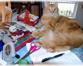 Cat Postcard, Fine Art Photography of Apelsin the Orange Cat as Writer and Crafter, Photography Art Print, Gift for Writer, Gift for Crafter