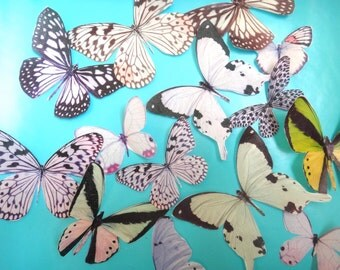 15 BONANZA of WHITE BUTTERFLY edible image wafer papers for your iced cupcakes, cakes, cookies