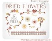 Autumn Flowers Dried Bouquet / Floral Wreath / Laurels & Borders / Design Elements / Blog Graphics - Instant Download