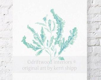 Seaweed in Woodlawn Watercolor Print 8x10 - Sea Life Wall Art in Woodlawn