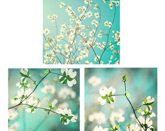Spring Flowers Photo Set - Fine Art Photography, three photographs print spring decor turquoise aqua teal blue wall art 5x7, 8x10, 11x14