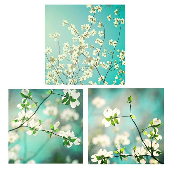 Bradberry Downs Blue Aqua Teal Light Green Yellow Wool: Spring Flowers Photo Set Fine Art Photography Three
