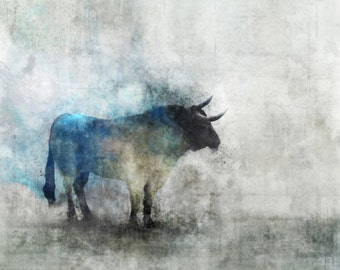 Raging Bull 01: Giclee Fine Art Print 13X19
