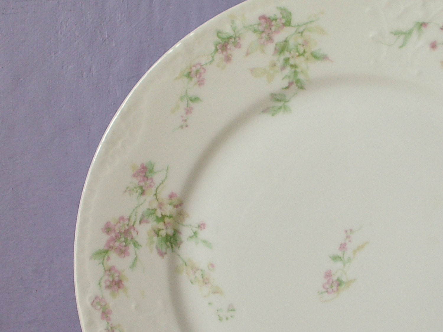 Terrific Antique Theodore Haviland Limoges China Patterns Images ...