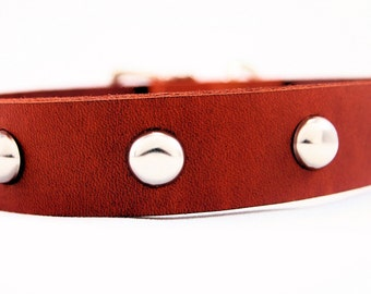Leather Dog Collar - Studded - Available in Tan, Brown, Red, Black, Green and White