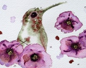 Watercolor Hummingbird Print,  Original Hummingbird Art Print, Bird Art