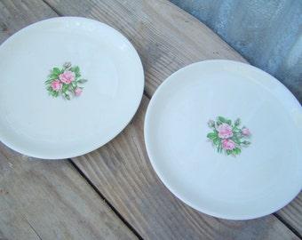 Vintage Rose Plates, Set of 2 Cottage Chic Plates