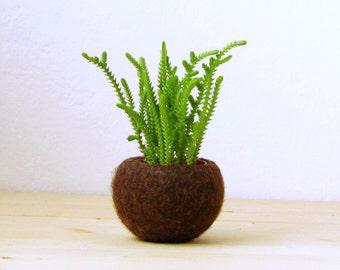 Succulent planter / air plant holder / cactus pot / plant vase / modern decor / desk accessories