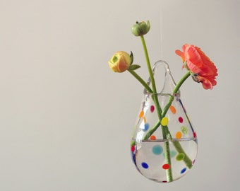 Air Plant Holder / Wall Vase / Polka Dot Glass Flower Vase / Colorful Home Decor