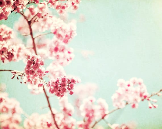"""Floral Photography - spring mint green pink red nursery light nature photography pale pastel wall photo flower photograph, """"Ode to Spring"""""""