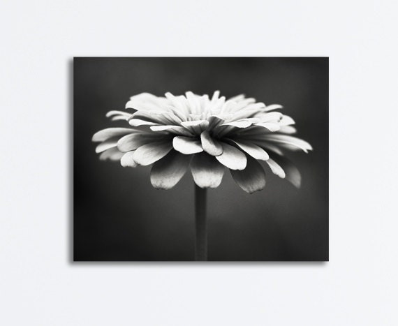 Floral Black And Grey Nature Tattoo: Items Similar To Black And White Flower Canvas Photography