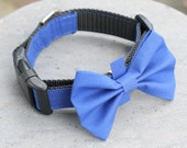 Dog Collar or Martingale - Simply Blue - Matching Bow Tie, Flower, and Leash Available