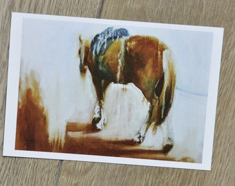 Horse lunging ring Postcard