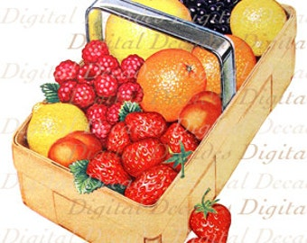 Fruit Basket - Garden Food - Digital Image - Vintage Art Illustration - Instant Download