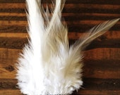 White and Chevron Feather Barrette