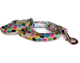 Modern Punk Dog Leash Set size Extra Small