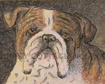 Bulldog Portrait - English Bulldog Art - Pencil Dog Portrait - Original Dog Art - Brindle Bulldog - 5x7 Dog Portrait