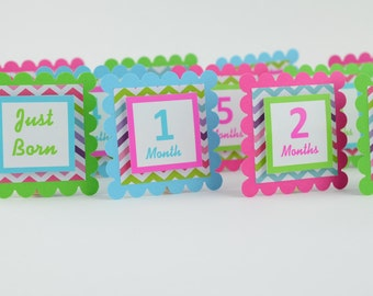 12 Month Photo Banner, First Year Photo Banner, First Year Banner, Multicolored Chevron Theme, Photo Banner, Chevron Theme, c-1001