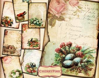 BIRD NEST vintage digital collage sheet, digital download for scrapbooking