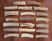 20 real deer antler pieces ornaments decor design jewelery rustic gift crafts