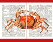 Red Crab diptych Print  over antique dictionary pages, set of 2 prints, coastal living, decorative nautical dictionary print
