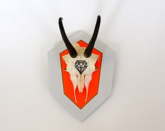 NEON ORANGE & DOVE grey diamond gem geometric arrow painted mount deer skull and antlers horns - taxidermy animal art unusual decor gift