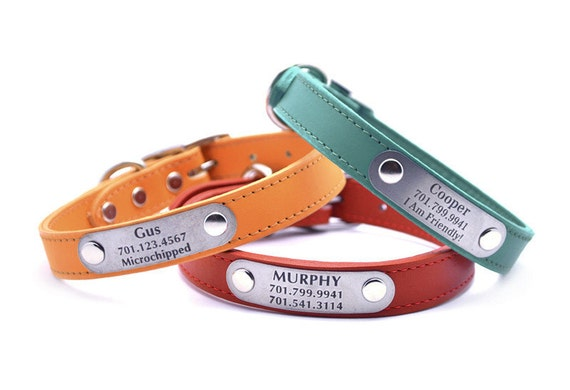 Leather Dog Collar with Laser Engraved Personalized Nameplate
