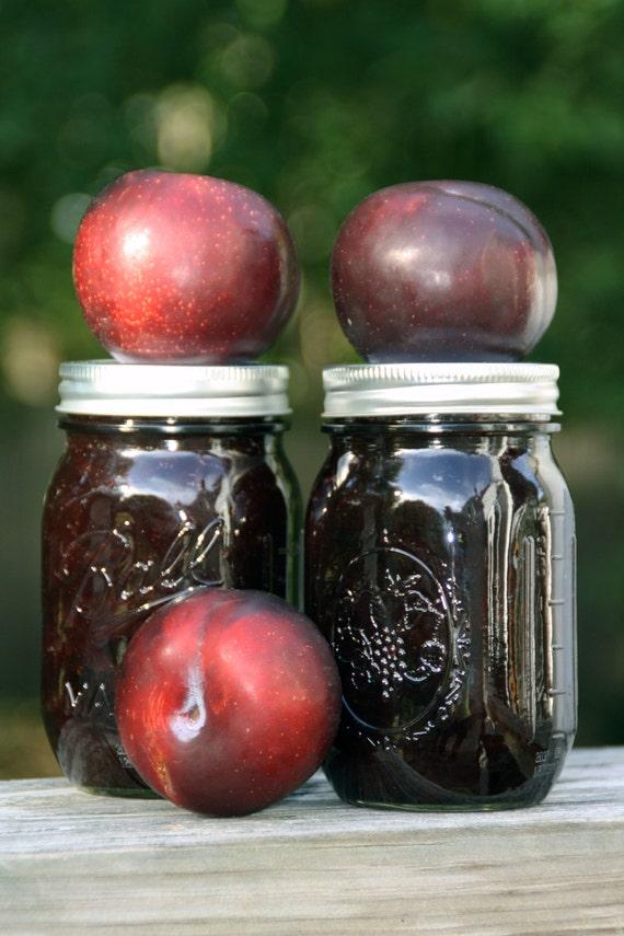 Organic Plum Jam - 8 oz.
