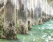 Beach Nautical Decor Ocean Pier Kelp Seaweed Turquoise Barnacles Ocean Seascape Summer Fort Foster Pier Kittery Maine, Fine Art Print