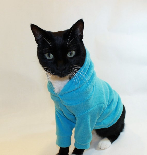 Cat Supplies Cats Clothing Kitty warm winter clothes pet kitty cat clothes 2 Legs Autumn and