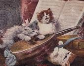 Vintage Postcard 1908 Kittens, Cats Singing Strumming Mandolin Ragtime