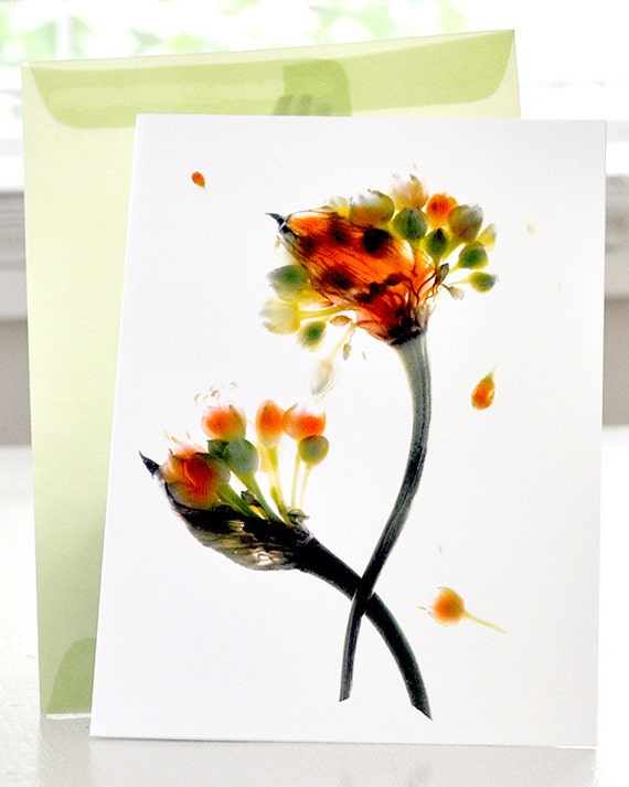 Floral Note Card - Wild Scapes - Free Shipping in US