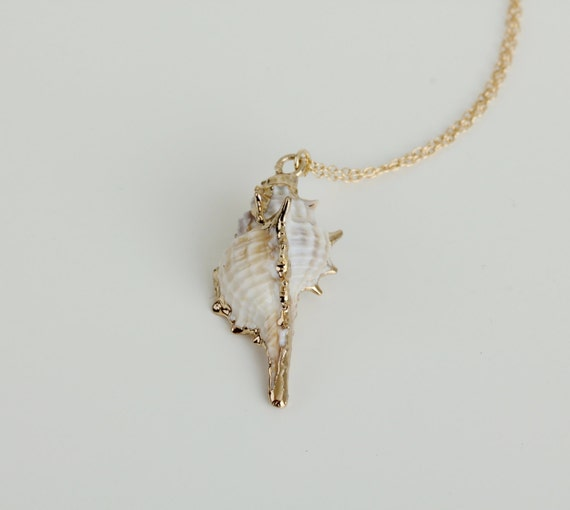 Delicate simple everyday real sea shell pendant gold necklace chain