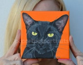 Custom Cat portrait Cat portrait  Black cat painting Cat art pet portrait  cat art work Paintings from Photo's cat portraits etsy